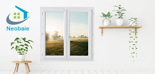 Vente privee fenêtres
